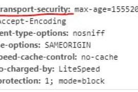 什么是HTTP严格传输安全(HSTS)以及如何添加此功能