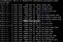 CyberPanel之用SFTP上传文件后如何解决用户/组和权限问题